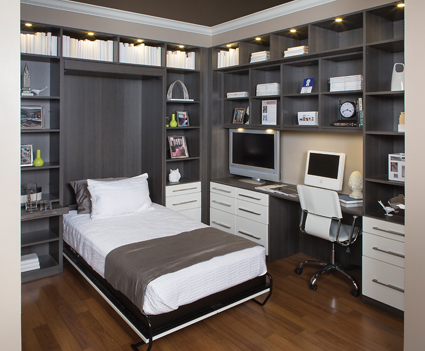 Wall Bed in Office Open
